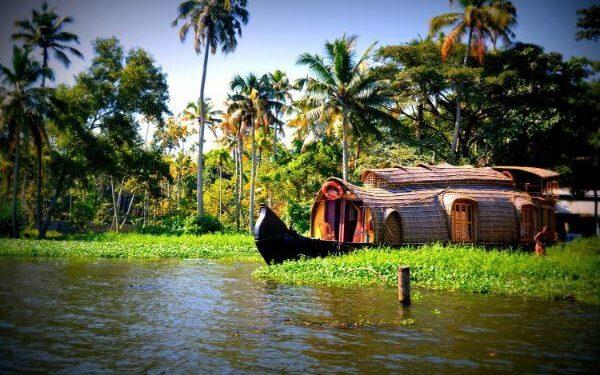 Kerala Top destinations for family vacations in India kerala