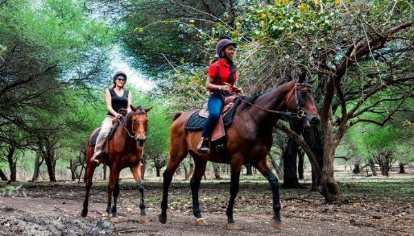 Casela Nature Park Segway Tour Top Mauritius Attractions and Places to Visit