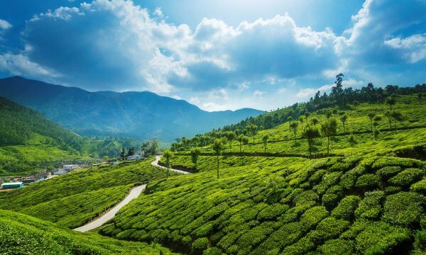 Munnar, Kerala Best places to travel with toddlers in India