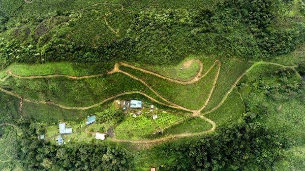 Munnar Top Kerala Attractions and Places to Visit