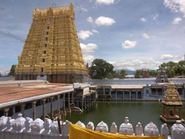 Sankaranarayanan Kovil Most Famous Temples in Around Tirunelveli